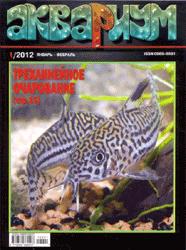 Аквариум (Россия)