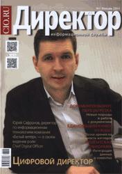 Директор информационной службы (Россия)